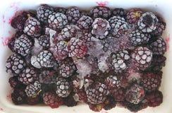 Замороженная шелковица Стоковое Фото