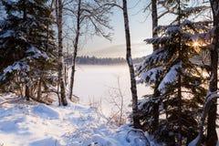 Замороженное озеро зимы в древесине под снежком стоковые фотографии rf