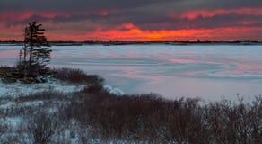 Замороженное озеро на тундре Стоковое Изображение