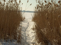 замороженное озеро шлюза к стоковые фотографии rf