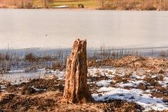 Замороженное озеро Muzzano около Лугано Стоковое Изображение RF