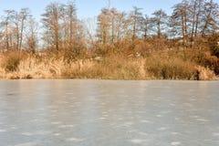 Замороженное озеро Muzzano около Лугано Стоковая Фотография