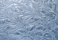 замороженное окно Стоковое Изображение RF