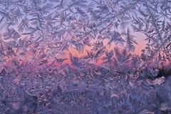 замороженное окно Стоковые Фотографии RF
