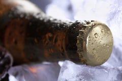 Замороженное пиво Стоковые Фотографии RF