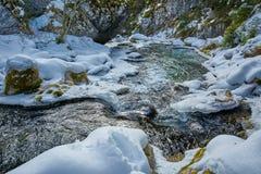 Замороженное река на горах Стоковое Изображение RF