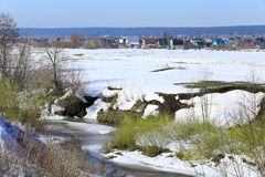 Замороженное река около леса Стоковые Изображения