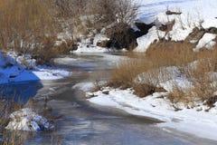 Замороженное река около леса Стоковое Изображение