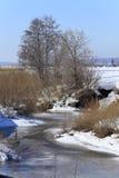 Замороженное река около леса Стоковая Фотография