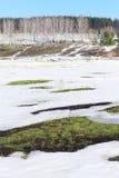 Замороженное река около леса Стоковое Изображение RF