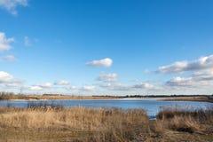 Замороженное река с тростниками на пляже Стоковые Фото