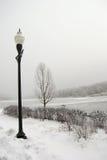 замороженное река Стоковая Фотография