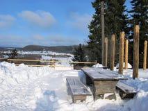 замороженное село Стоковая Фотография RF
