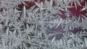 Замороженное стекло с льдом Стоковые Фотографии RF