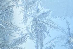 замороженное стеклянное окно Стоковое Изображение