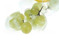 замороженные виноградины стоковое изображение rf