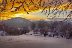 Замороженные земли Стоковые Фото