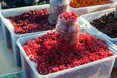 Замороженные красные плоды ягоды стоковая фотография