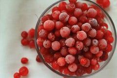 Замороженные клюквы ягод, стеклянная пластинка перед белой linen тканью, конец-вверх, взгляд сверху, селективный фокус Стоковое Изображение