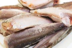 Замороженные мерлузы рыб Стоковое Изображение