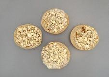 Замороженные мини бейгл пиццы сыра на лотке выпечки Стоковые Фотографии RF