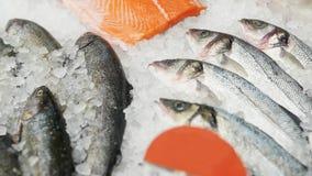 Замороженные рыбы в коробках в супермаркете или магазине стоковые изображения rf
