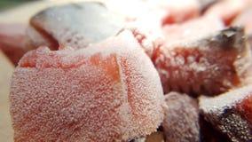 Замороженные рыбы отрезанные на плите Стоковое Изображение RF