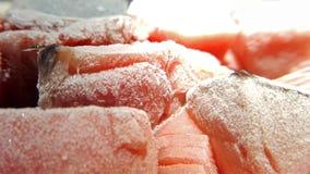 Замороженные рыбы отрезанные на плите Стоковая Фотография
