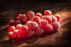 Замороженные смородины на деревянной плите Стоковые Фото