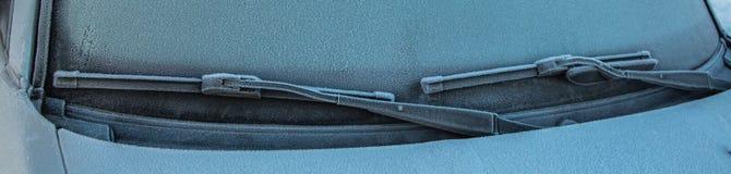 Замороженные счищатели стоковые изображения rf