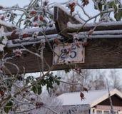 Замороженные ягоды и знак числа стоковые фото