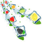 Замороженные ягоды и цитрус стоковые изображения