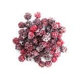 Замороженные dewberries isolared на белой предпосылке Стоковое Изображение RF