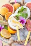 Замороженные popsicles плодоовощ Стоковые Изображения RF