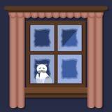 Замороженный Бело-серый кот сидит вне окна в зиме иллюстрация вектора