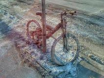 Замороженный горный велосипед запертый к указателю Стоковые Фотографии RF