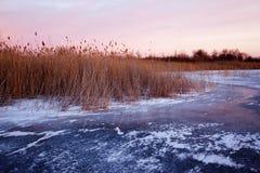 замороженный заход солнца озера Стоковое Изображение