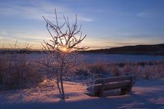 замороженный заход солнца Стоковая Фотография