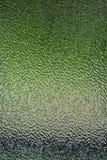 замороженный зеленый цвет Стоковое Изображение