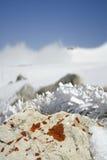 замороженный камень травы Стоковое Изображение RF