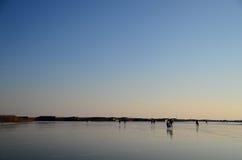 замороженный кататься на коньках озера льда Стоковая Фотография