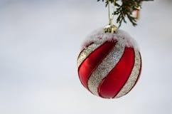 Замороженный красный Striped орнамент рождества украшая дерево Snowy внешнее Стоковые Фотографии RF