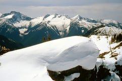 замороженный ландшафт Стоковые Изображения RF