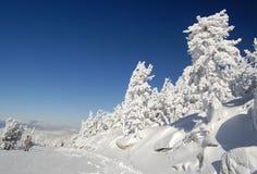 замороженный мир Стоковое Изображение RF