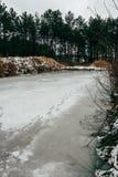 Замороженный пруд в парке зимы стоковая фотография