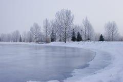 замороженный пруд Стоковая Фотография RF