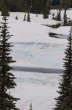 Замороженный пруд в Вашингтоне Стоковые Фото