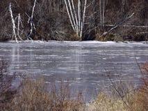 замороженный пруд Стоковые Изображения RF