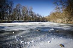 замороженный пруд Стоковая Фотография