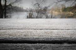 Замороженный стенд Стоковое Изображение